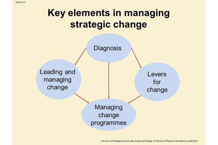 Managing and Leading Strategic Change Oz Assignments