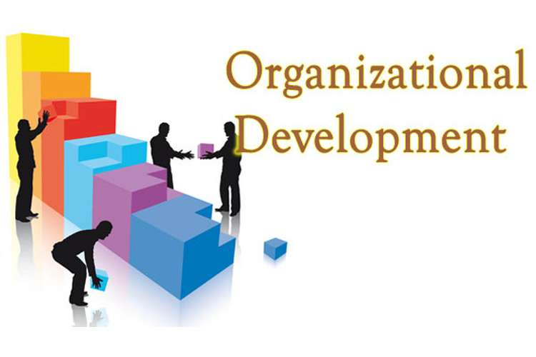 MMH707 Organisational Development and Change Assignments