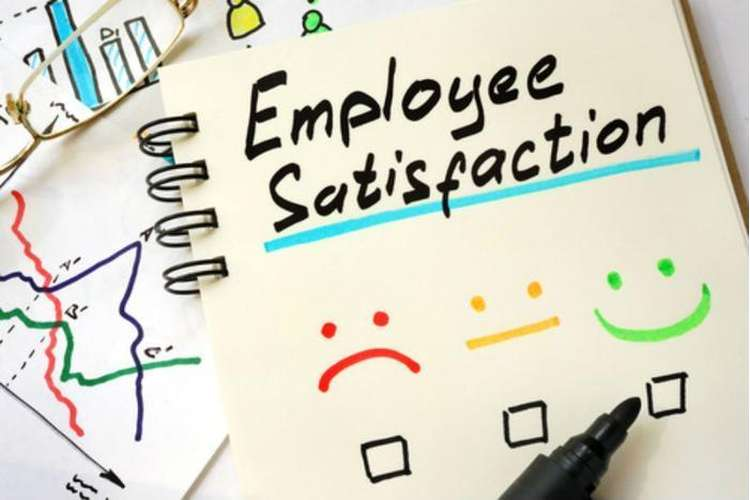 Job Employee Satisfaction Assignments Solution