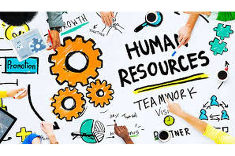 bsbhrm602 Manage Human Resources Strategic Planning
