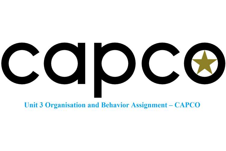 Unit 3 Organisation and Behavior Assignment – CAPCO