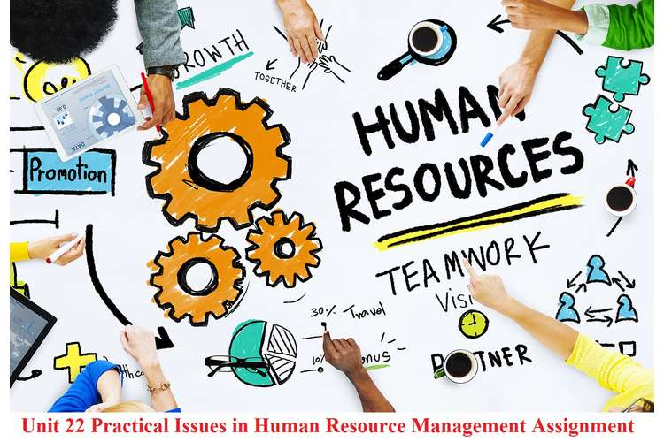 Unit 22 Practical Issues in Human Resource Management Assignment