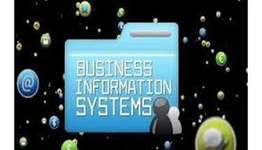 ITECH1005-5005 Business Information Systems Assignment