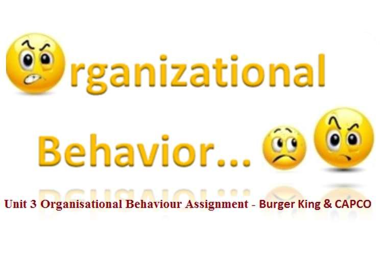 Unit 3 Organisational Behaviour Assignment - Burger King & CAPCO