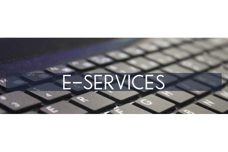 ICT E-Service Case Study Help