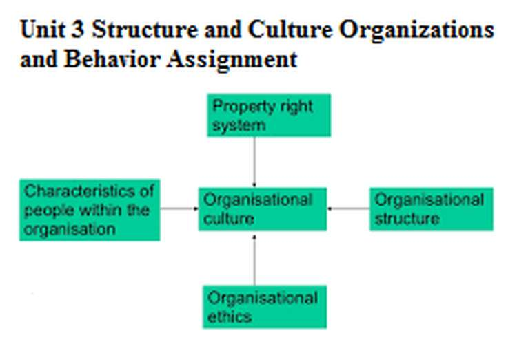 Unit 3 Structure and Culture Organizations and Behavior Assignment