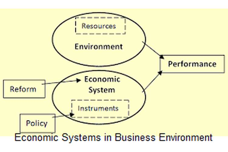 Unit 1 Economic Systems in Business Environment Assignment