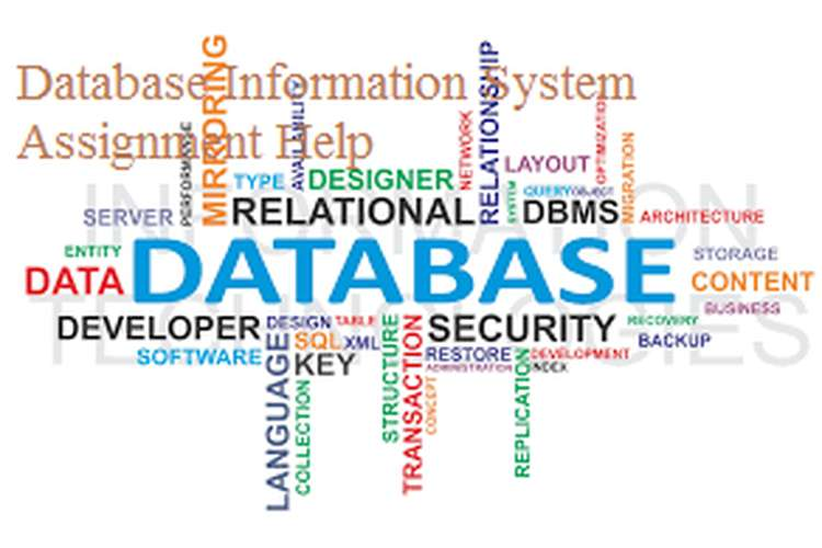 Database Information System Assignment Help