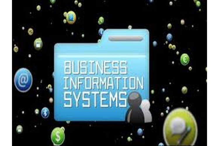 Business Information Systems Oz Assignments