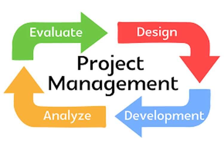 HI6008 Capstone Project Management Assignment Help