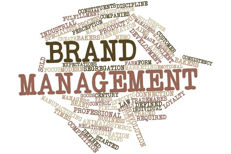 BE440 Brand Management Assignment Help