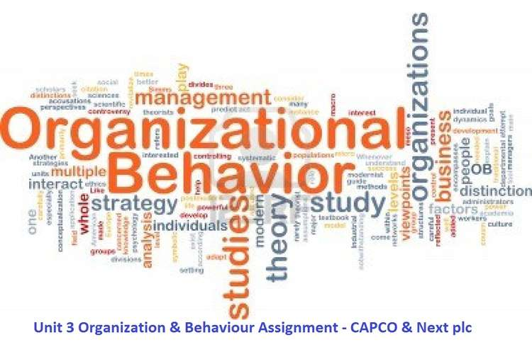 Unit 3 Organization & Behaviour Assignment - CAPCO & Next plc