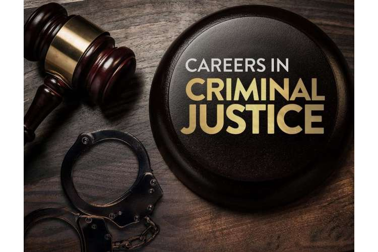 1012CCJ Criminal Justice Assignments Solution