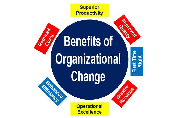 BSBINN601 Lead and Manage Organisational Change Assignment