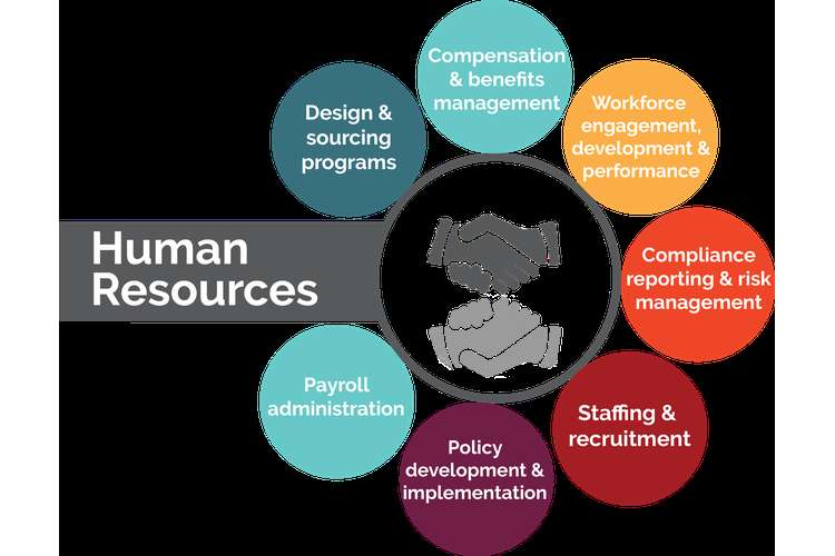 BSBHRM501A Manage Human Resources Service