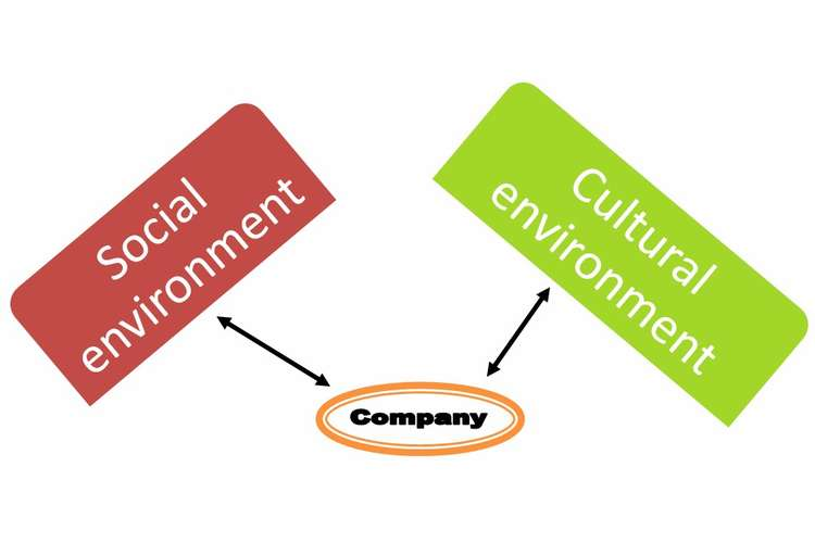 Socio Cultural Environment Oz Assignment