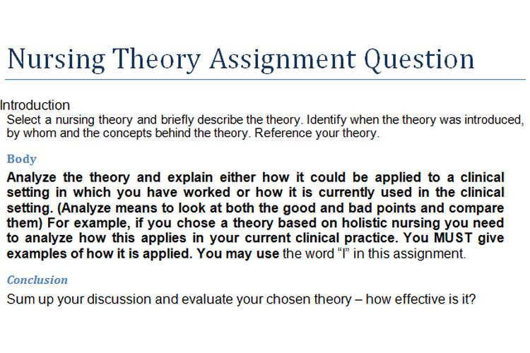 Nursing Theory Assignment Question