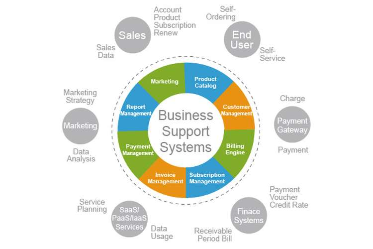 COIT20250 E-business Systems Assignments Solution