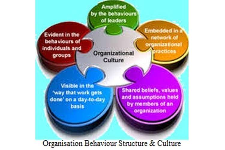 Organisation Behaviour Structure & Culture Assignment