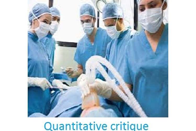 Quantitative Critique Assignment Help