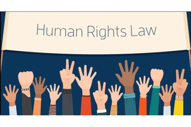 LAW3405 Human Rights Law Oz Assignments Essay