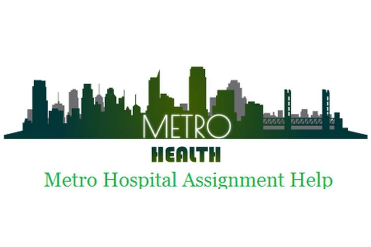 Metro Hospital Assignment Help