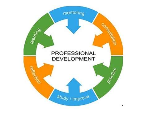 personal and professional skills of managers