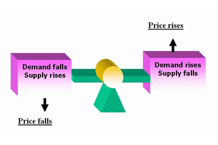 Economics Demand Supply Assignment Help