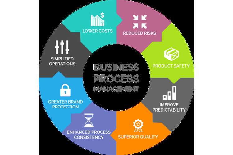 MIS352 Business Process Management Assignments Solution