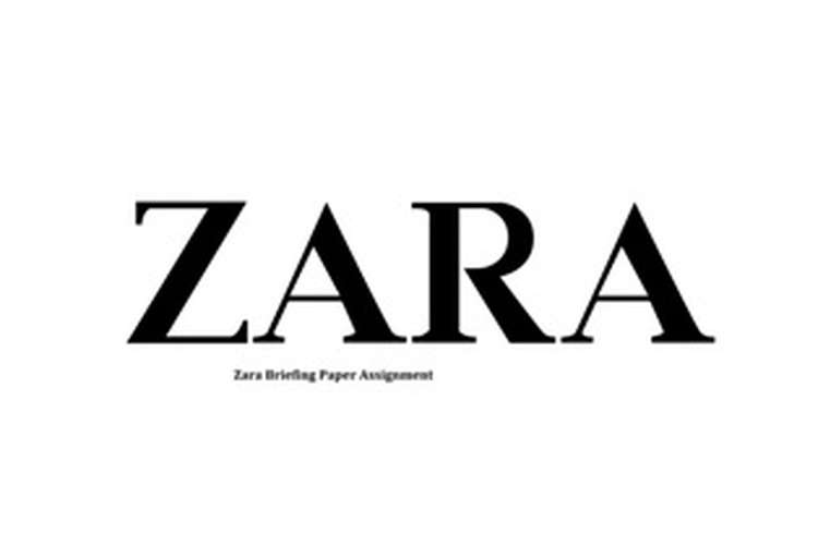 Zara Briefing Paper Assignment