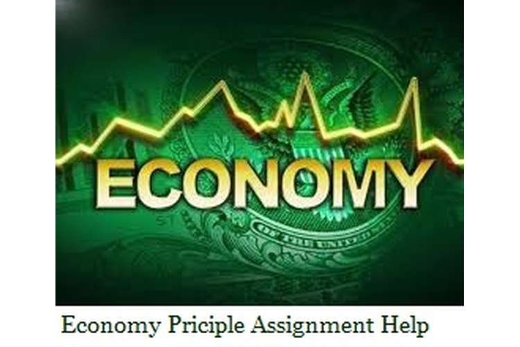 Economic Principle Assignment Help
