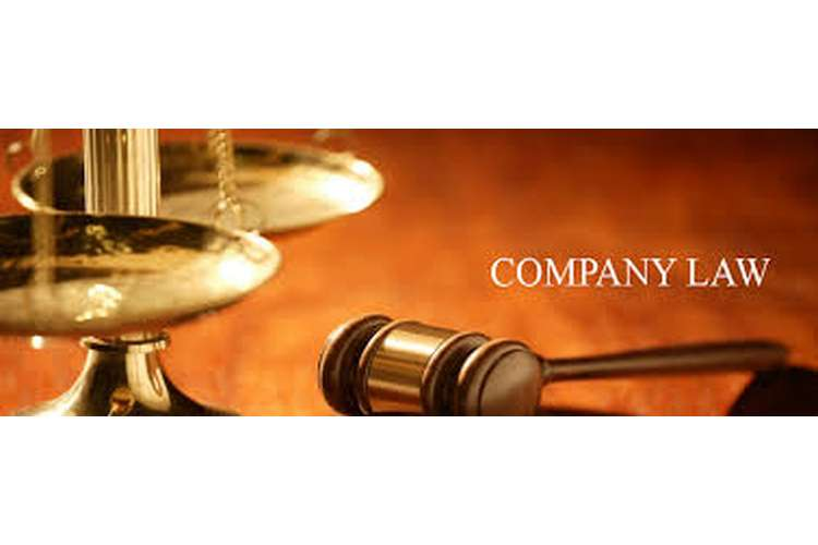 Company Law Assignment Solution