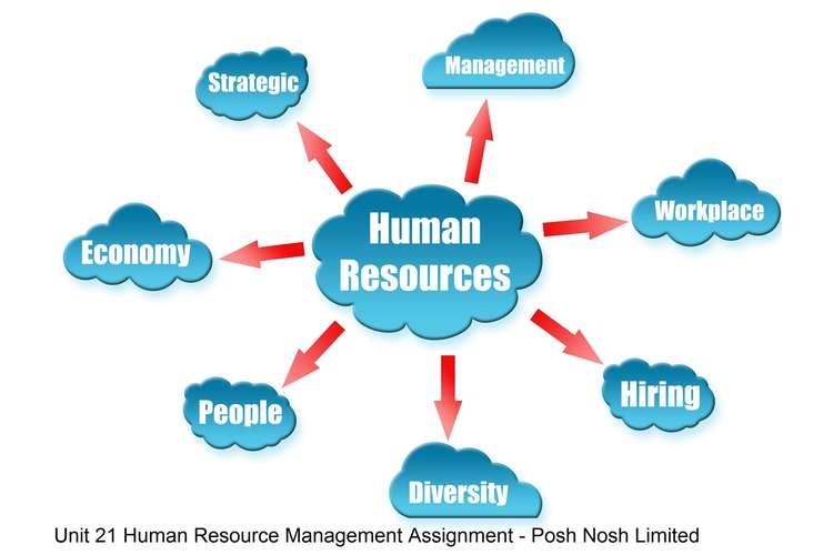 Unit 21 Human Resource Management Assignment - Posh Nosh Limited