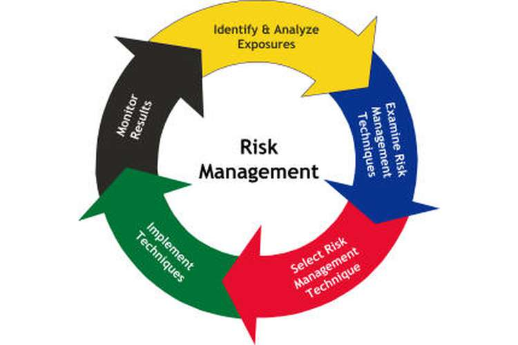 ITC 596 IT Risk Management Assignment Help
