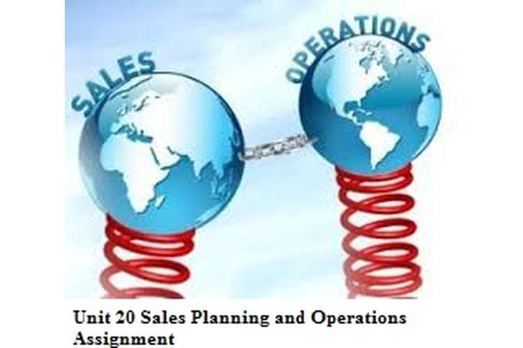 Unit 20 Sales Planning and Operations Assignment copy
