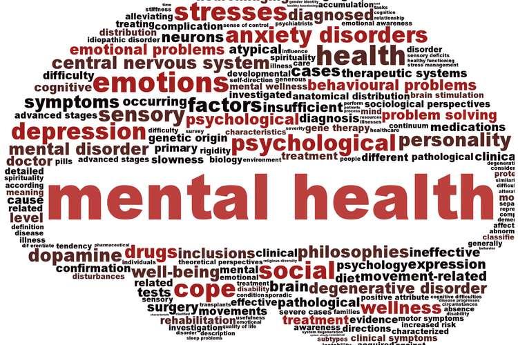 NURS1132 Mental Health Nursing Assignment Help