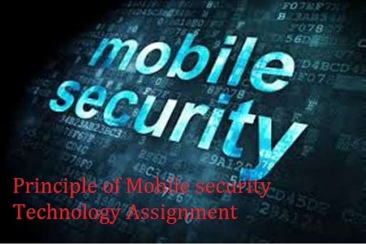 Principles of Mobile Security Techniques Assignment