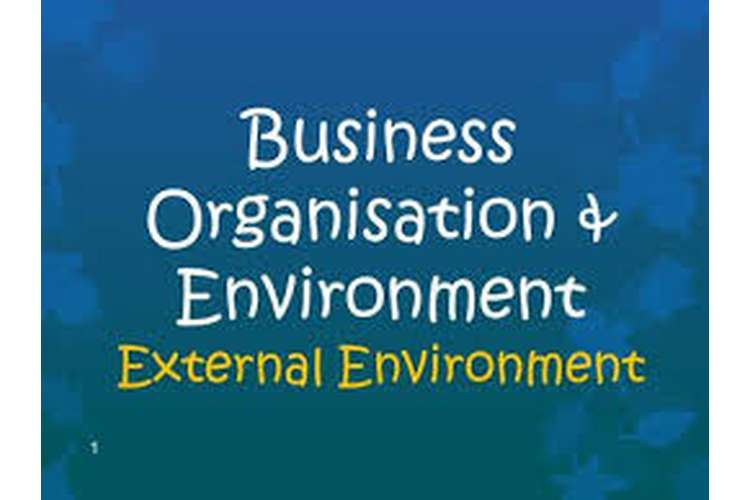 Unit 19 External Business Environment Assignment