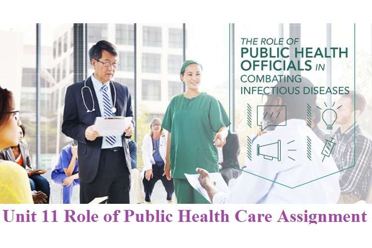 Unit 11 Role of Public Health Care Assignment