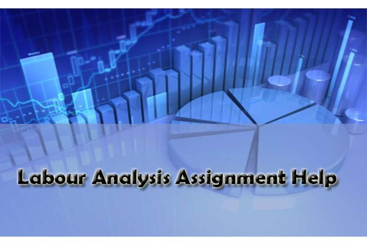 Labour Analysis Assignment Help