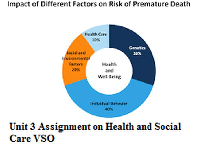 Unit 3 Assignment on Health and Social Care VSO