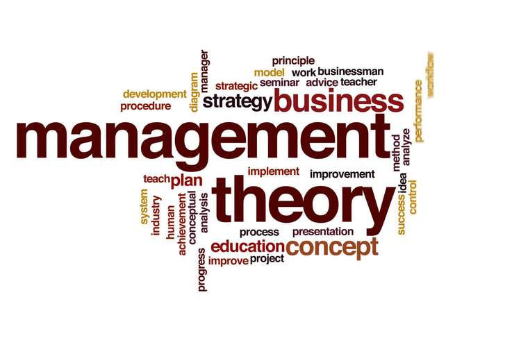 Management Theory OZ Assignments