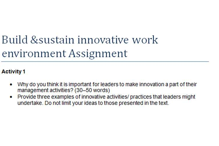 Build &Sustain Innovative Work Environment Assignment