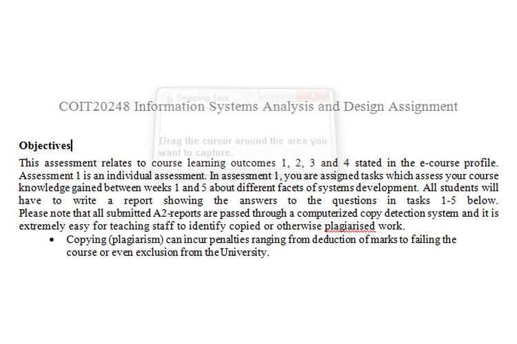 COIT20248 Information Systems Analysis Design Assignment