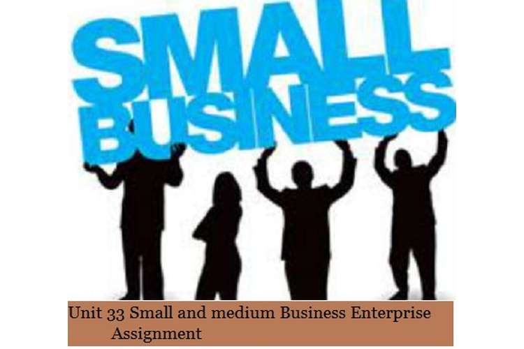 Small and medium Business Enterprise Assignment