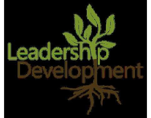 MAN6325 Leadership Development Assignment help