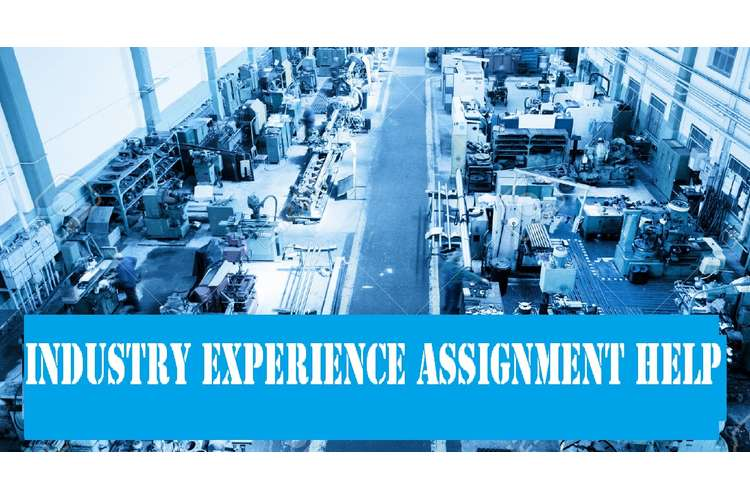 Industry Experience Assignment Help