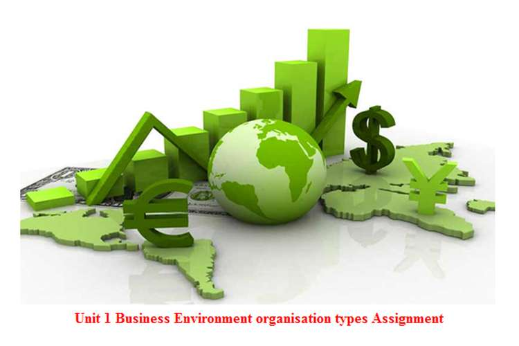 Unit 1 Business Environment organisation types Assignment