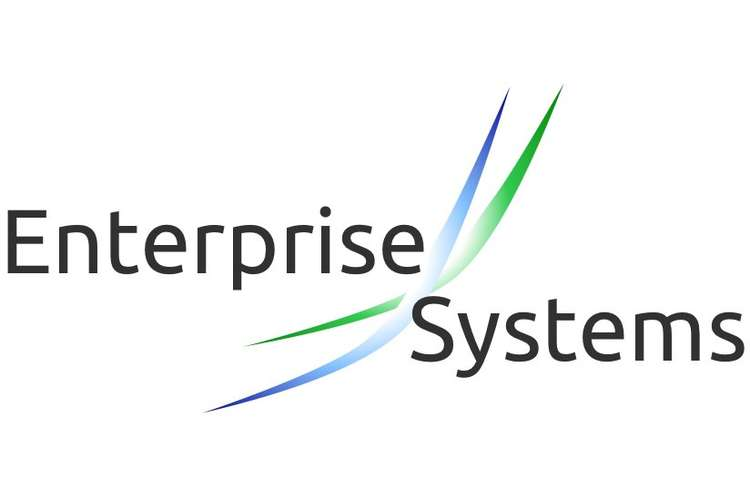 COIS 12073 Enterprise Systems Assignment Help