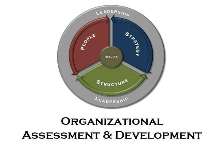 BSBMGT615 Contribute to Organization Development